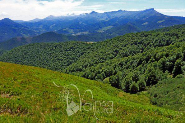 Los 10 mejores miradores de Cantabria. Turismo rural de experiencias