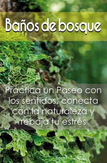 Los mejores Baños de Bosque de Cantabria